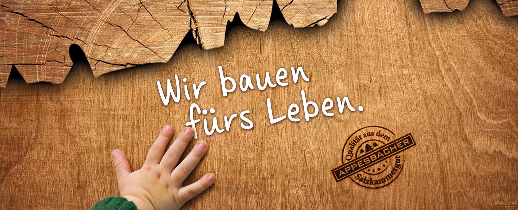 Appesbacher Zimmerei Holzbau - Bauen mit Holz und Lehm - Holzbau Salzburg